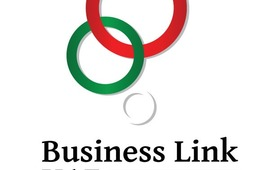 Best Pro Services in UAE   Business Link UAE