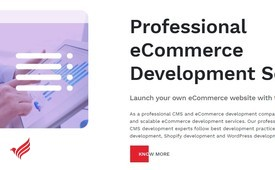 Professional E-Commerce Development Services | X-Byte Enterprise Solutions