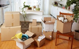 PROFESSIONAL MOVERS PACKERS 0551550451