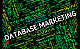 UAE databases for marketing and sales provider-see description.
