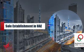 Sole Establishment Company Formation in UAE