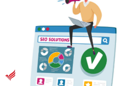 Affordable and best SEO company in Dubai - TeraByte
