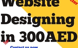 Website Designing in 300 AED