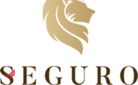 Seguro Private Wealth