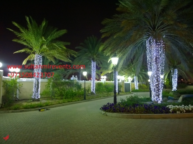 Sultan Mir Decoration Lights services for your weddings, Events, Parties